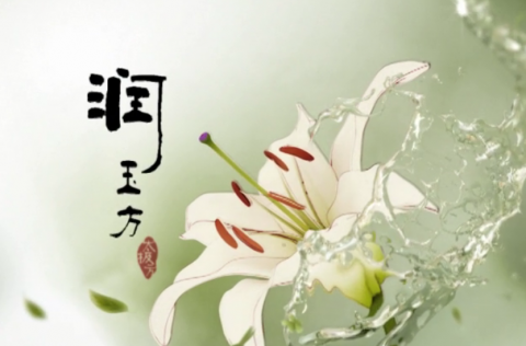 "Herborist ""Ink Flower"